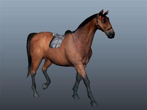 arabian horse  model maya files   modeling