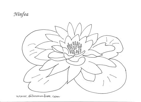 disegni da colorare con il computer cornicette fiori da colorare