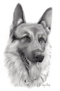 Realistic Pencil Animal Drawings Dog