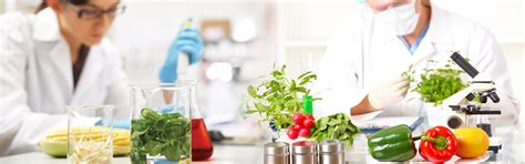 test cuisine pharmaceutical quality assurance testing and quality