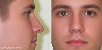Nose Noses Animation Tip Masculine Quotes Faces