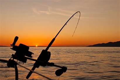Fishing Rod Rigging Down