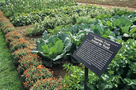 longwood gardens restaurant sustainability at the restaurant longwood gardens
