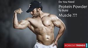 Do You Really Need Protein Shakes To Build Muscle