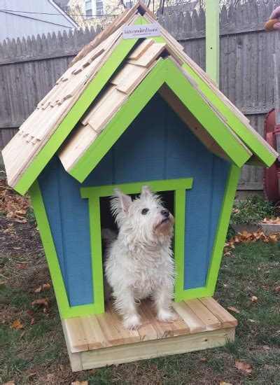 dog houses puppy houses  crooked dog houses