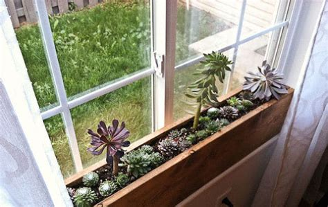 Ideas For Space-saving Planters