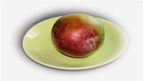 mango schale essen die l 228 stige nachbarin k 252 chentipp reifetest bei mango und
