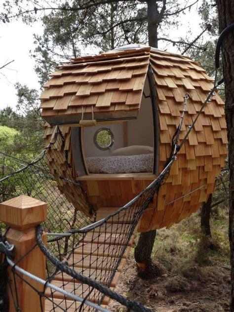 chambre dans les arbres insolite une bulle pour dormir dans les arbres small