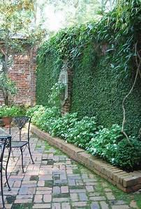 Plantes Grimpantes Mur : lorsque mur v g tal et plantes grimpantes s entrelacent ~ Melissatoandfro.com Idées de Décoration