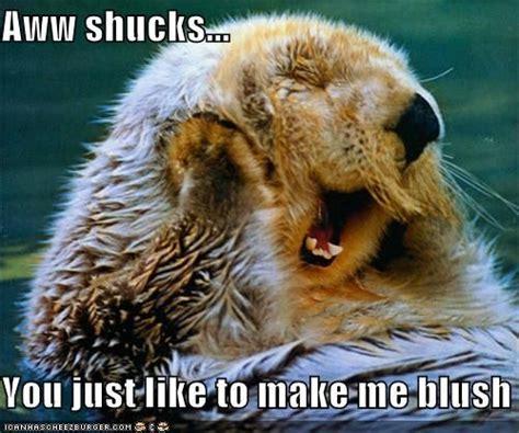 Making Me Blush Meme - aww shucks you just like to make me blush blush