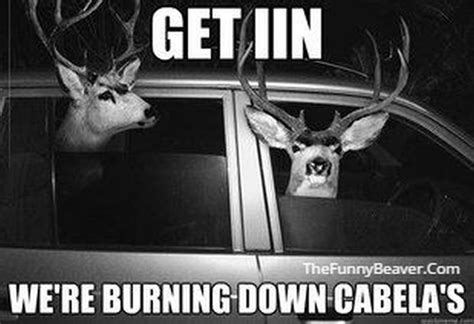 Funny Deer Memes - funny hunting and fishing pictures and memes