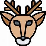 Deer Icons Icon