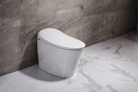 dyconn faucet arial tankless    combo bidet