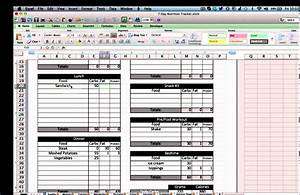 Loan Repayment Template Excel Food Diary Excel Template Erabm Lovely Free Printable