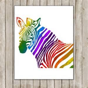 best 25 rainbow zebra ideas on pinterest crochet zebra