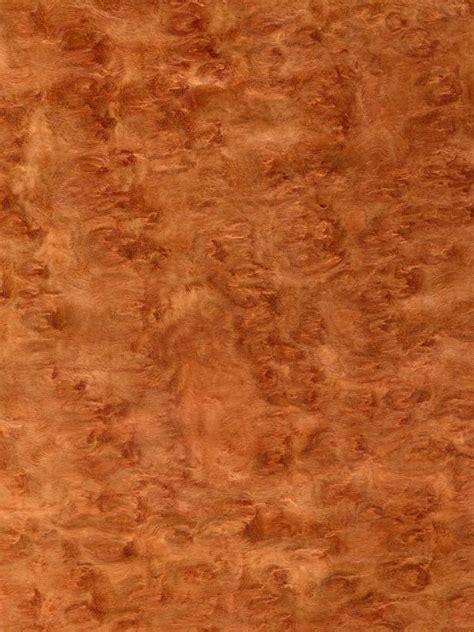 benefits  eucalyptus flooring hgtv