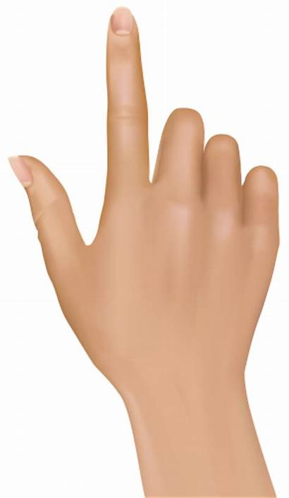 Finger Hand Clipart Clip Hands Transparent Fingers