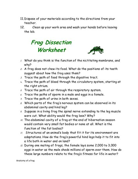 frog dissection worksheet answer key what do you think is