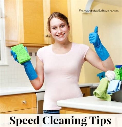 18 Best Speedy Tips Images 10 Speed Cleaning Tips And Tricks Cleaning