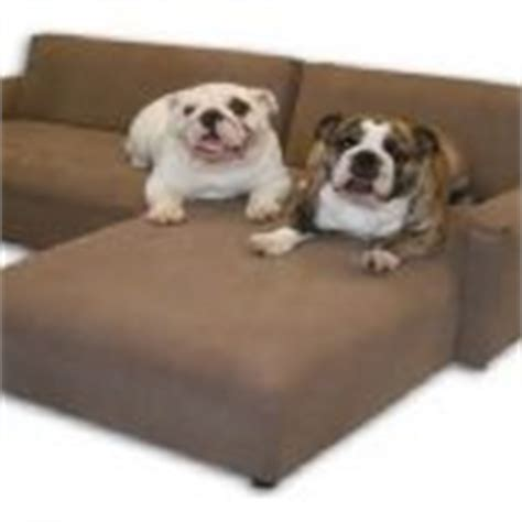 best fabric for sofa with dogs comfy x large cozysofa info
