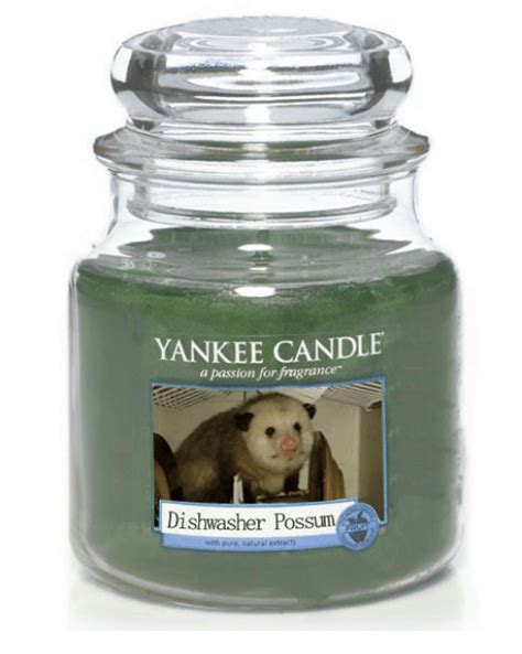 Candles Meme - yankee candle apassion for fragrance dishwasher possum yankee candle meme on me me