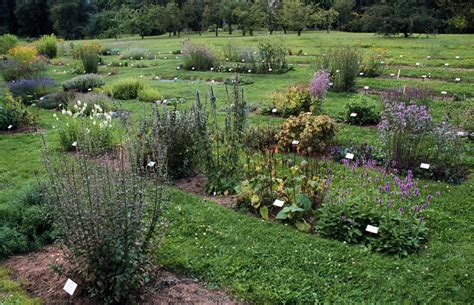 Garten Landschaftsbau Rostock garten landschaftsbau rostock galabau schmidt rostock