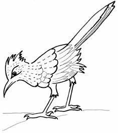 Huge Collection of 'Roadrunner drawing'. Download more ...