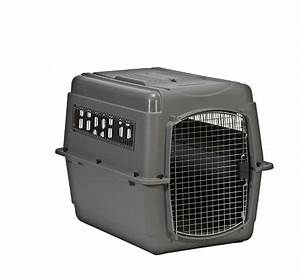 Extra large dog travel crate petmate sky kennel 40lx 27wx for Petmate xl dog kennel