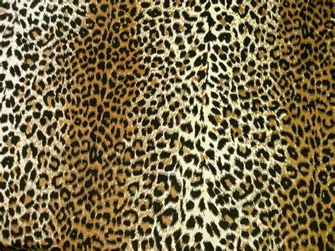 leopard upholstery fabric leopard velvet upholstery fabric alainthebault com