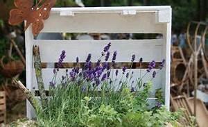 Lavendel Pflanzen Im Topf : balkonpflanzen ~ Frokenaadalensverden.com Haus und Dekorationen