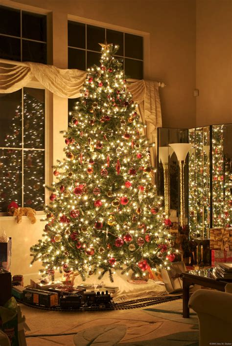 chic christmas decorations    memorable holiday