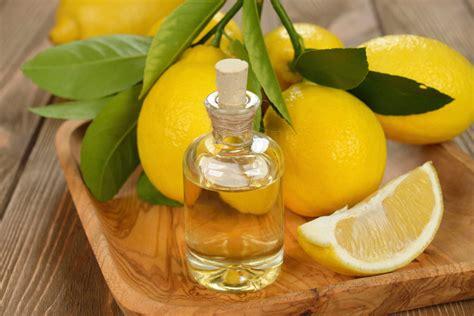 cuisine aux huiles essentielles tout savoir sur l aromathérapie et les huiles essentielles
