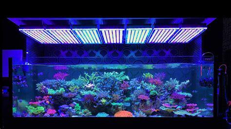 illuminazione led per acquari illuminazione led acquari flexsolight