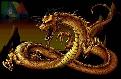 Dragon Gold Wallpapers Chinese Asian Yang Yin