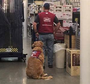 lowes worker and dog facebook good news network With lowes hires service dog