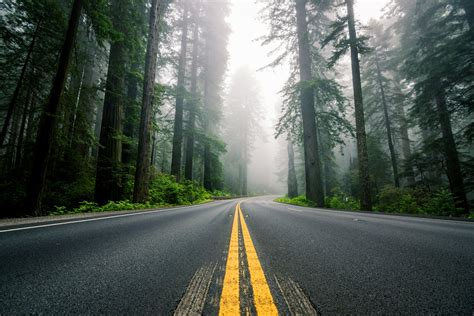 united states north america road highway counting forest