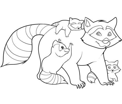 printable raccoon coloring pages  kids