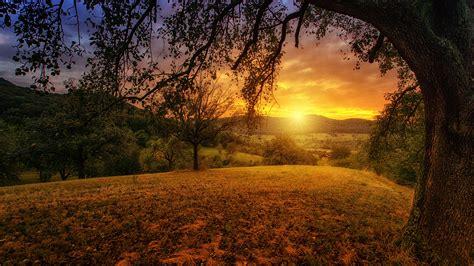 Download Free Hd Beautiful Morning Desktop Wallpaper In 4k
