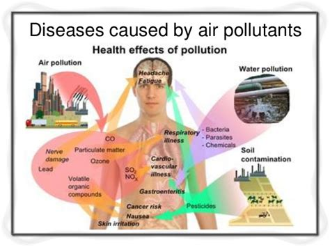 diseases caused  air pollution