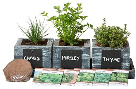 herb garden planter by planter pro s complete herb