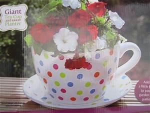GIANT MULTI COLOUR POLKA DOT TEA CUP & SAUCER FLOWER PLANT ...