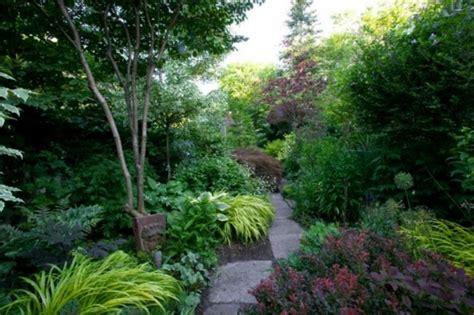 Garten Schatten Pflanzen by 6 Arten Schattenpflanzen F 252 R Einen Wundersch 246 Nen Garten