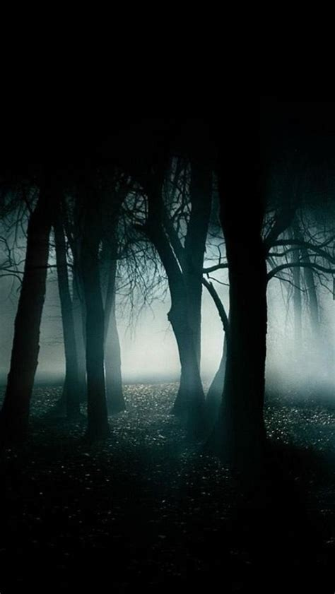 Search free forest wallpapers on zedge and personalize your phone to suit you. Best Dark Forest - The iPhone Wallpapers