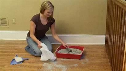 Litter Cat Gifs Box Infomercial Hilarious Cleaning