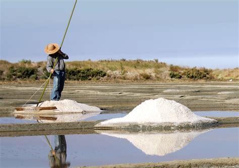 terre de sel gu 233 rande loire atlantique comit 233 des