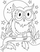 Coloring Owl Pages Outline Drawing Preschool Summer Para Sheets Preschoolers Clipart Printable Adult Template Colouring Owls Colorir Sketch Colorear Frozen sketch template
