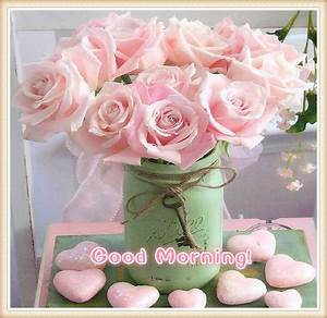 Pink Good Morning Flowers Pictures, Photos, and Images for ...