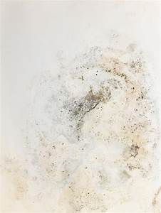 Schimmel An Der Wand : schimmel an der wand diese arten setzen sich hier fest ~ Frokenaadalensverden.com Haus und Dekorationen