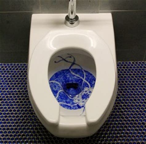 Bluss Sassy Tolet how to remove stains caused by lysol cling gel toilet bowl