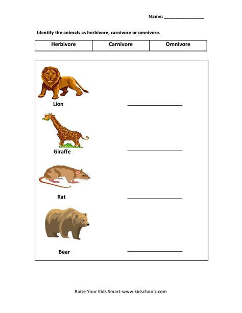 types of animals worksheets for grade 2 animals worksheets for part 1 worksheet mogenk